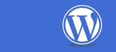 Wordpress is good for professional websites