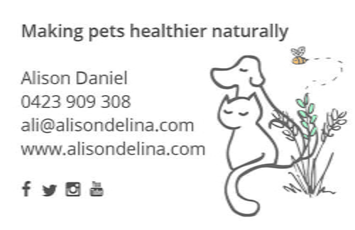 Alison Delina Business Card