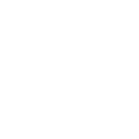 Bridget DEsigns Website and Graphic Design