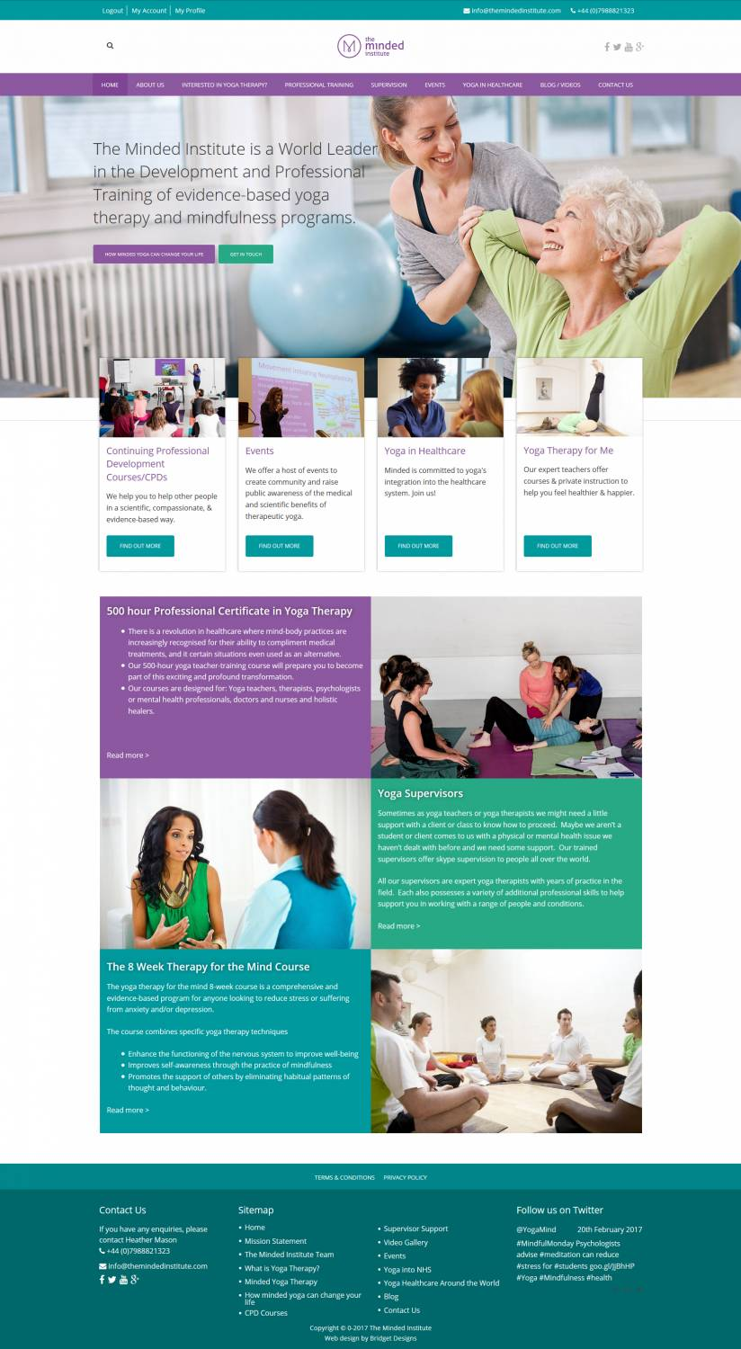 The Minded Institute Website Design